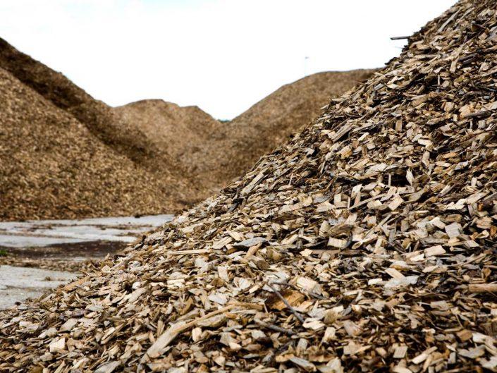 San Marco Biomasse